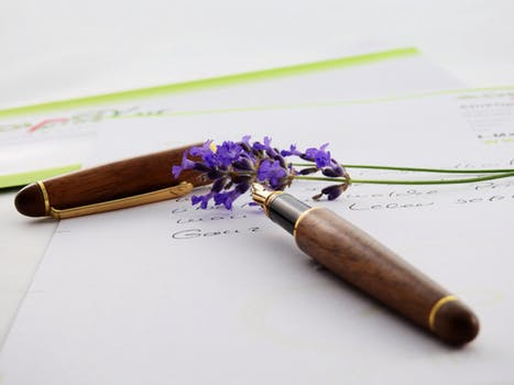 lavender-flower-purple-nature-158644