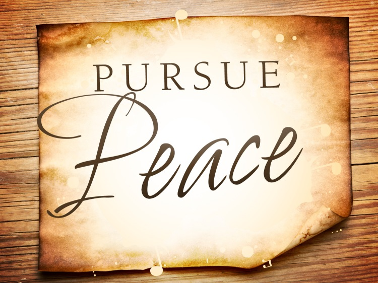 pursue-peace_t_nv