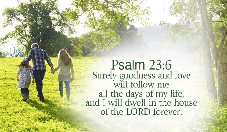 28191-11142015-Psalm-23-6-social