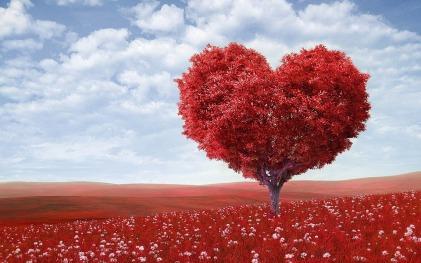 heart-shape-1714807_960_720.jpg